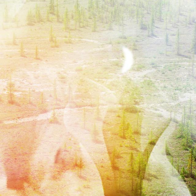 Yellow Rainbow – Trail Through the Underbrush (Spotify)