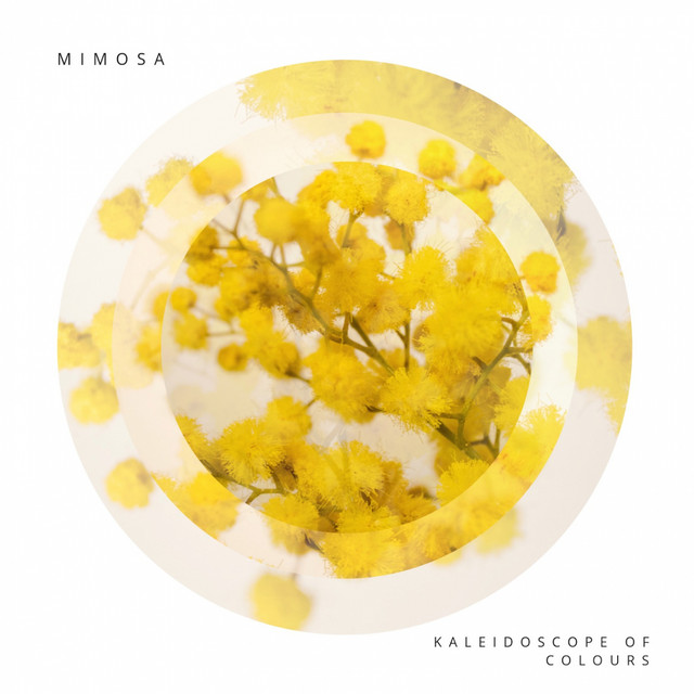 Kaleidoscope of Colours – Mimosa (Spotify)
