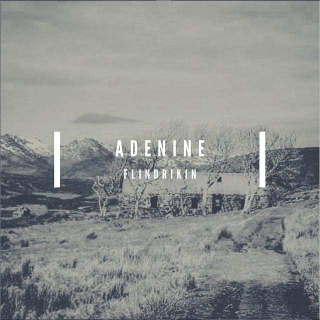 Adenine – Flindrikin (Spotify)