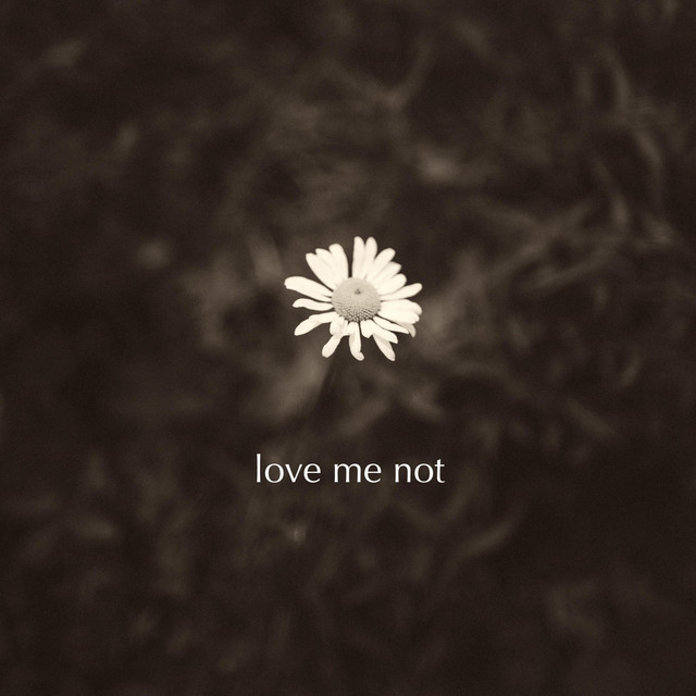Denney – Love Me Not (Spotify)