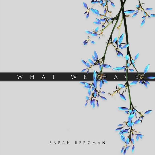 Sarah Bergman – What We Have (Spotify)