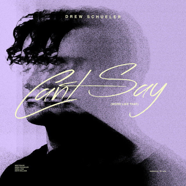 Drew Schueler – Can't Say (Word Like That) (Spotify)