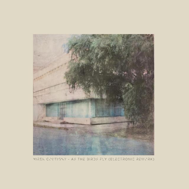 Mirek Coutigny, Jonathan Bonny – As the Birds Fly (Electronic Rework) [feat. Jonathan Bonny] (Spotify)