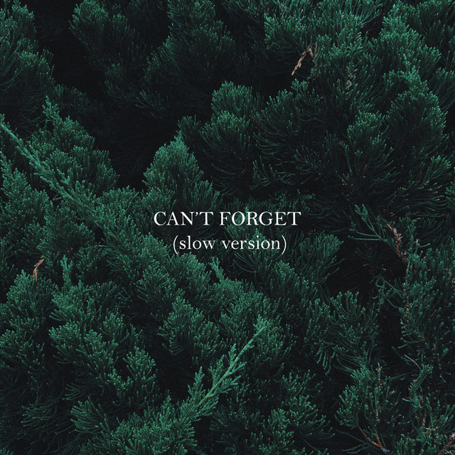 Alice Green – Can't Forget – Slow Version (Spotify)