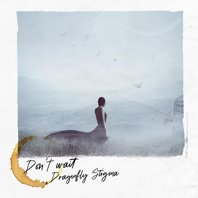 DragonflyStigma – Don't Wait (Spotify)