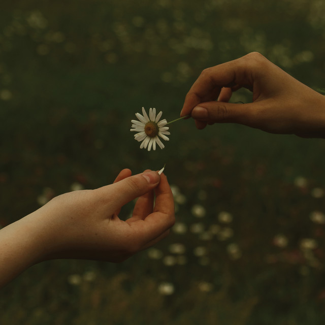 Goldmund – For a Time (Spotify)
