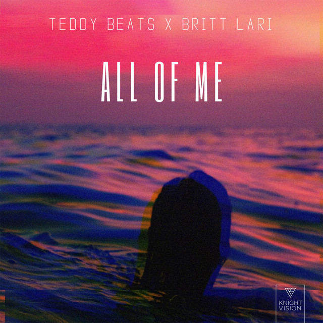 Teddy Beats – All Of Me (Spotify)