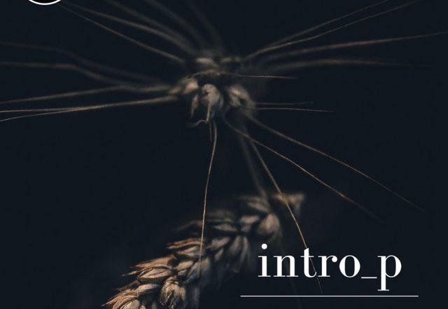 intro_p - Promises (Spotify)