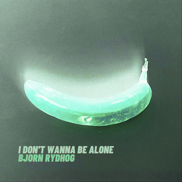 Bjorn Rydhog – I Don't Wanna Be Alone (Spotify)