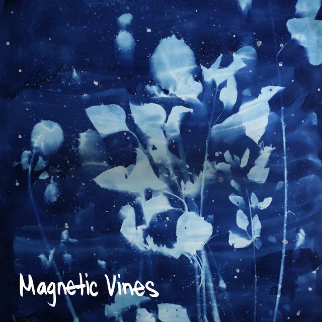 Magnetic Vines
