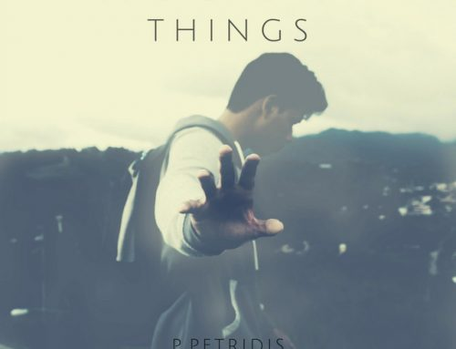 P.Petridis – The End Of Things (Spotify)
